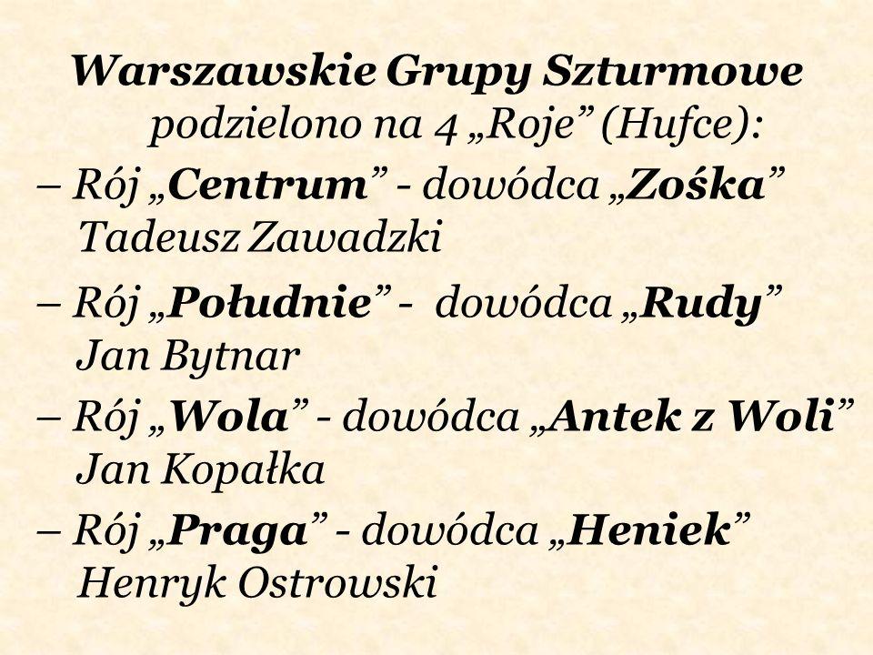 – Rój Centrum - dowódca Zośka Tadeusz Zawadzki Warszawskie Grupy Szturmowe podzielono na 4 Roje (Hufce): – Rój Południe - dowódca Rudy Jan Bytnar – Ró
