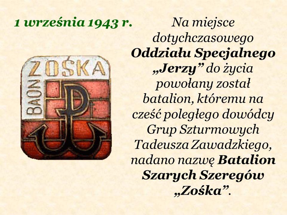 Na miejsce dotychczasowego Oddziału Specjalnego Jerzy do życia powołany został batalion, któremu na cześć poległego dowódcy Grup Szturmowych Tadeusza
