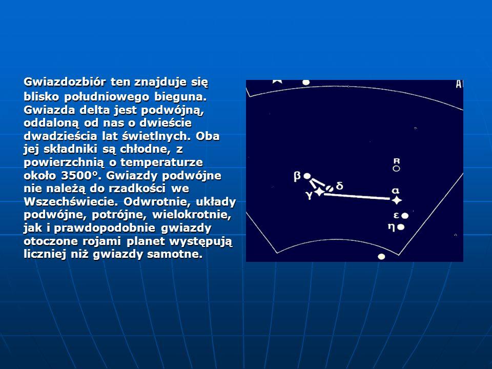 Gwiazdozbiór ten znajduje się blisko południowego bieguna.