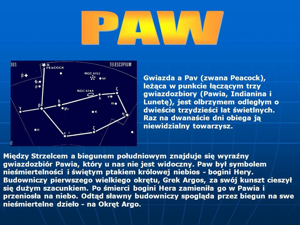Między Strzelcem a biegunem południowym znajduje się wyraźny gwiazdozbiór Pawia, który u nas nie jest widoczny. Paw był symbolem nieśmiertelności i św