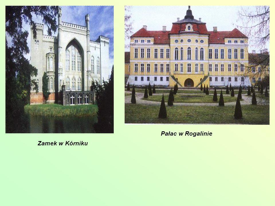 Pałac w Rogalinie Zamek w Kórniku