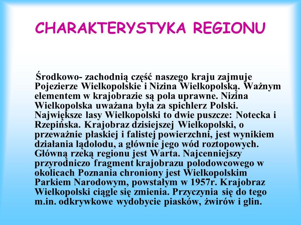 CHARAKTERYSTYKA REGIONU Środkowo- zachodnią część naszego kraju zajmuje Pojezierze Wielkopolskie i Nizina Wielkopolską. Ważnym elementem w krajobrazie