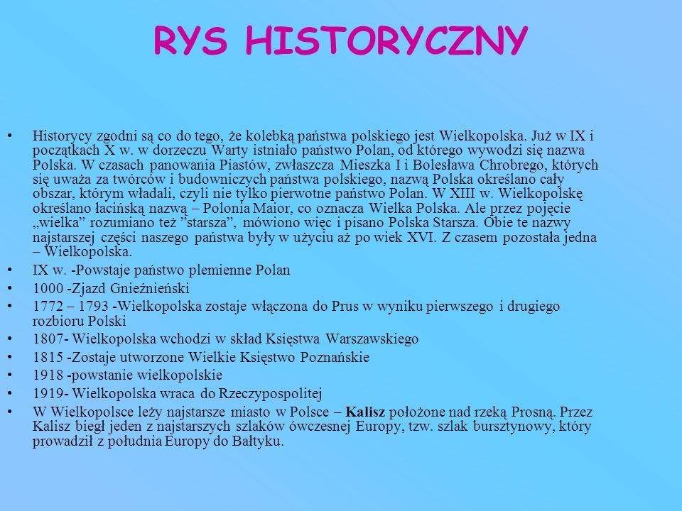 RYS HISTORYCZNY Historycy zgodni są co do tego, że kolebką państwa polskiego jest Wielkopolska. Już w IX i początkach X w. w dorzeczu Warty istniało p