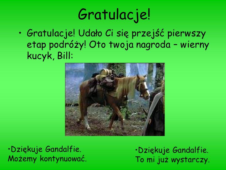 Gratulacje! Gratulacje! Udało Ci się przejść pierwszy etap podróży! Oto twoja nagroda – wierny kucyk, Bill: Dziękuje Gandalfie. Możemy kontynuować.Dzi