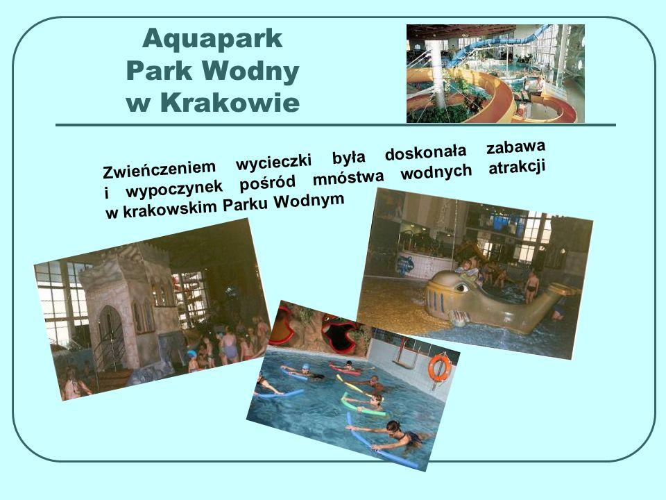 Aquapark Park Wodny w Krakowie Z w i e ń c z e n i e m w y c i e c z k i b y ł a d o s k o n a ł a z a b a w a i w y p o c z y n e k p o ś r ó d m n ó