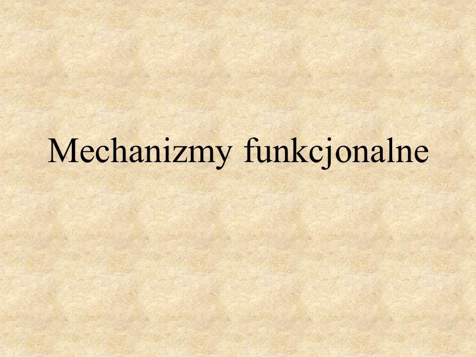 Mechanizmy funkcjonalne służą do zmiany ruchu prostoliniowego lub obrotowego członu czynnego na określony ruch członu biernego