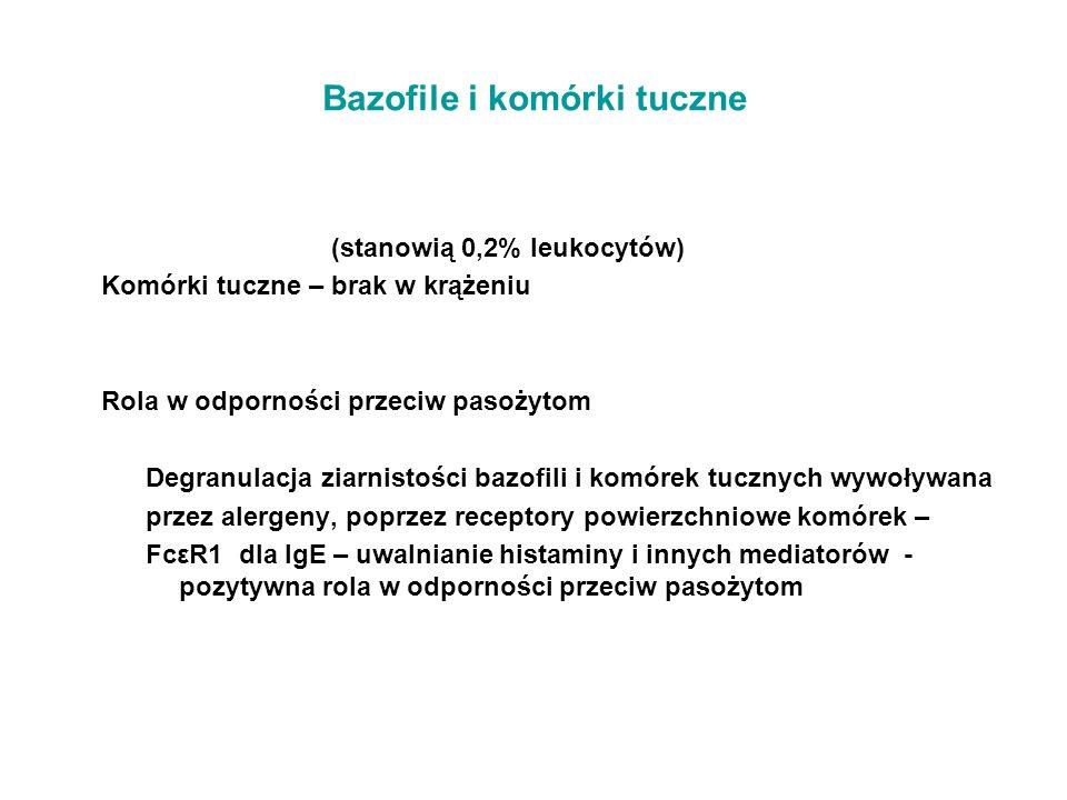 Bazofile i komórki tuczne (stanowią 0,2% leukocytów) Komórki tuczne – brak w krążeniu Rola w odporności przeciw pasożytom Degranulacja ziarnistości ba