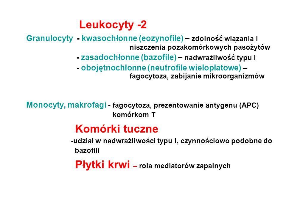 Leukocyty -2 Granulocyty - kwasochłonne (eozynofile) – zdolność wiązania i niszczenia pozakomórkowych pasożytów - zasadochłonne (bazofile) – nadwrażli