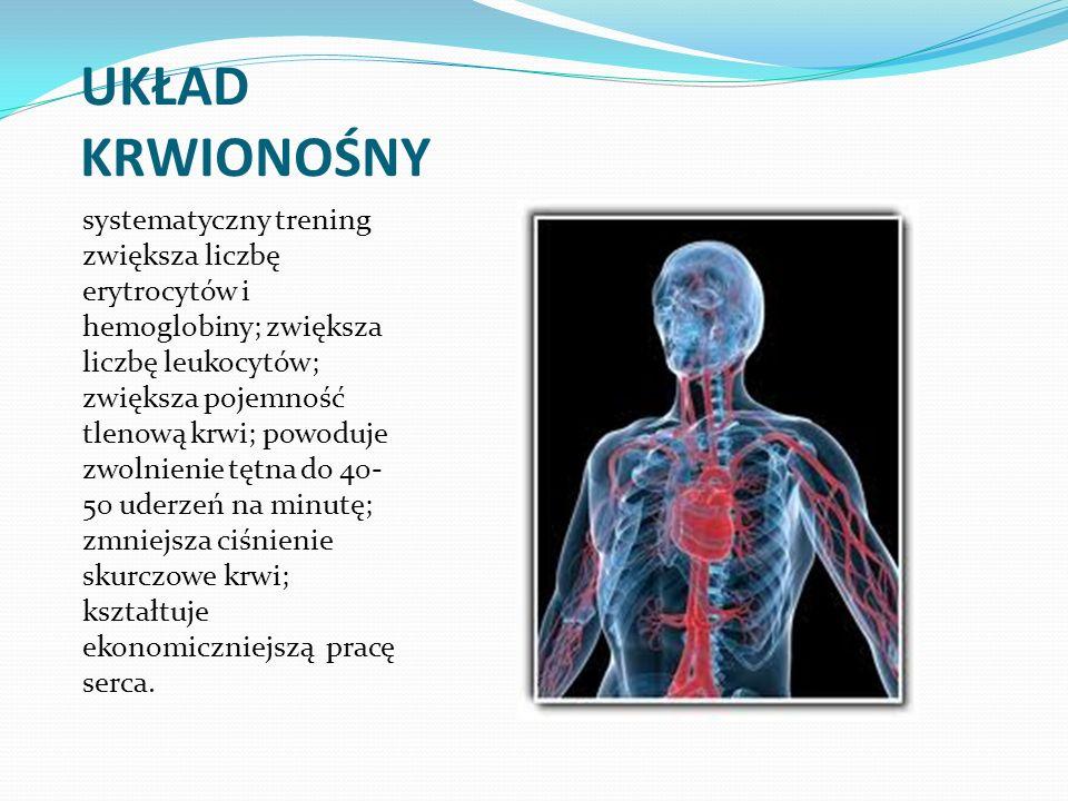 UKŁAD KRWIONOŚNY systematyczny trening zwiększa liczbę erytrocytów i hemoglobiny; zwiększa liczbę leukocytów; zwiększa pojemność tlenową krwi; powoduj