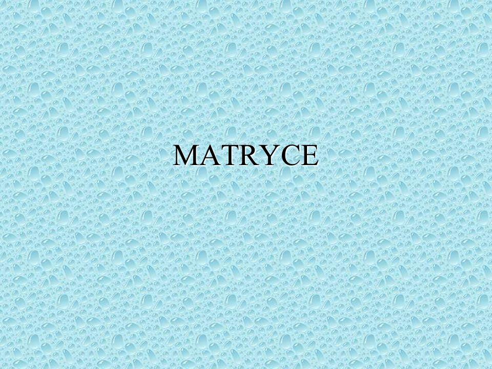 Matryca (łac.mater - matka) to ogólne określenie formy do wykonywania kopii.