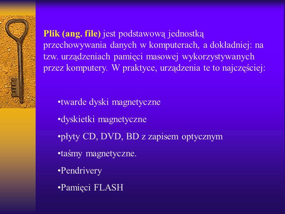 Plik (ang. file) jest podstawową jednostką przechowywania danych w komputerach, a dokładniej: na tzw. urządzeniach pamięci masowej wykorzystywanych pr
