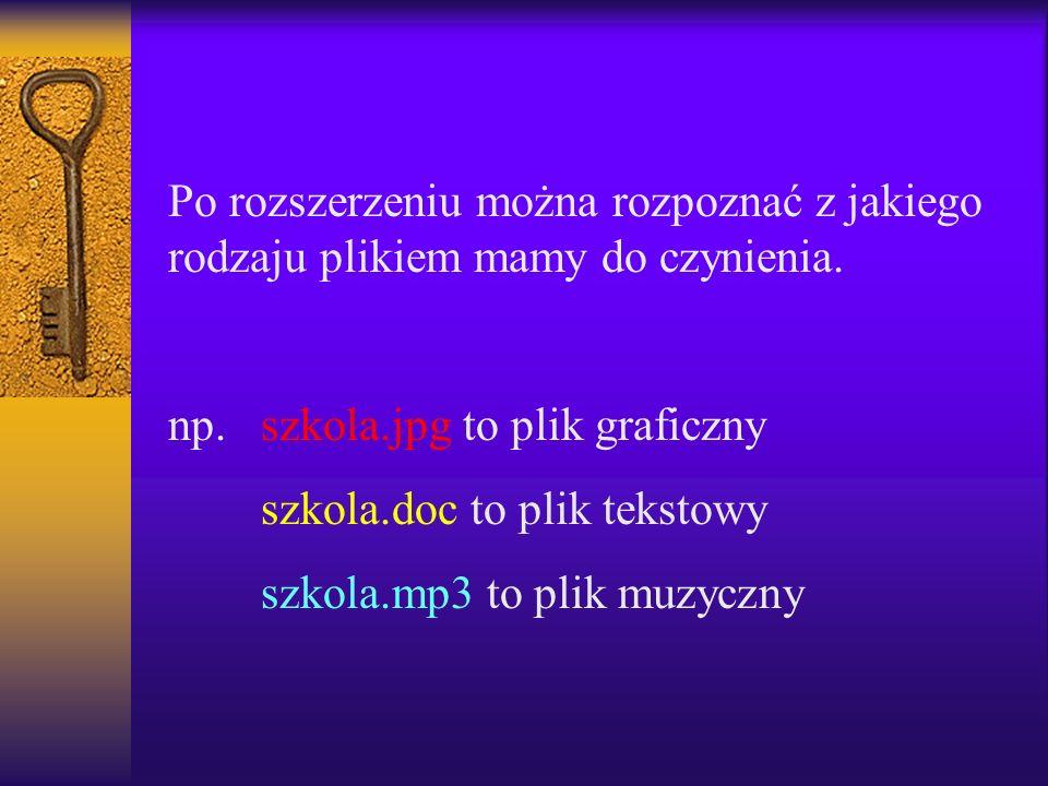 Po rozszerzeniu można rozpoznać z jakiego rodzaju plikiem mamy do czynienia. np. szkola.jpg to plik graficzny szkola.doc to plik tekstowy szkola.mp3 t