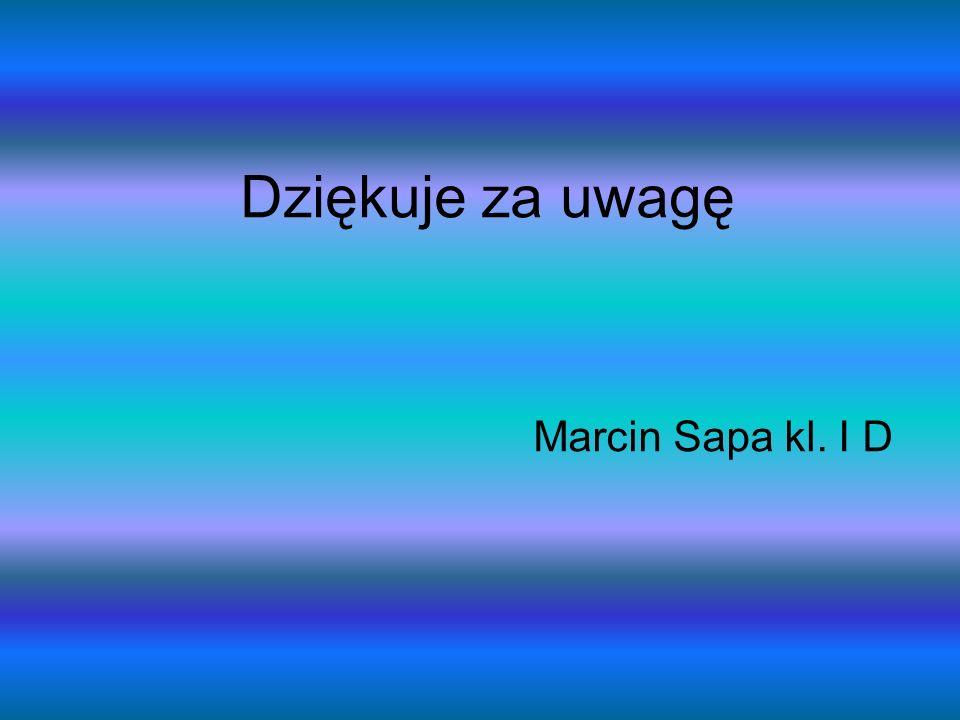 Dziękuje za uwagę Marcin Sapa kl. I D