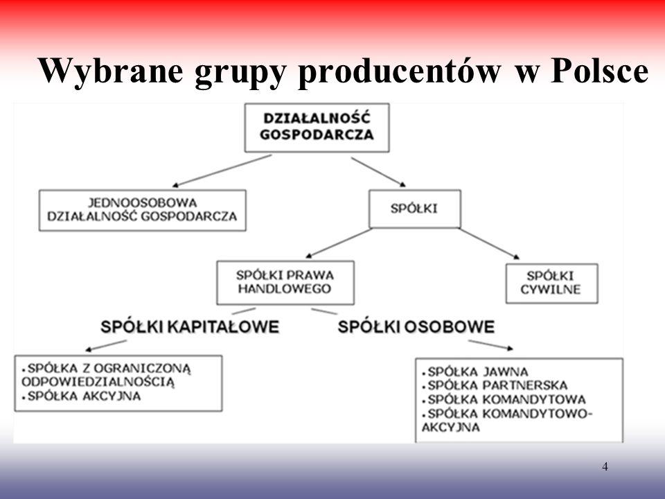 4 Wybrane grupy producentów w Polsce