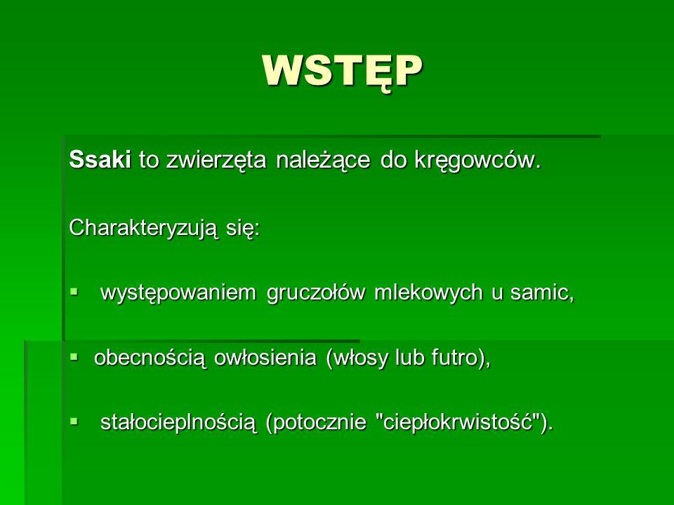 Na terenie Polski żyje około 100 gatunków ssaków.Na terenie Polski żyje około 100 gatunków ssaków.