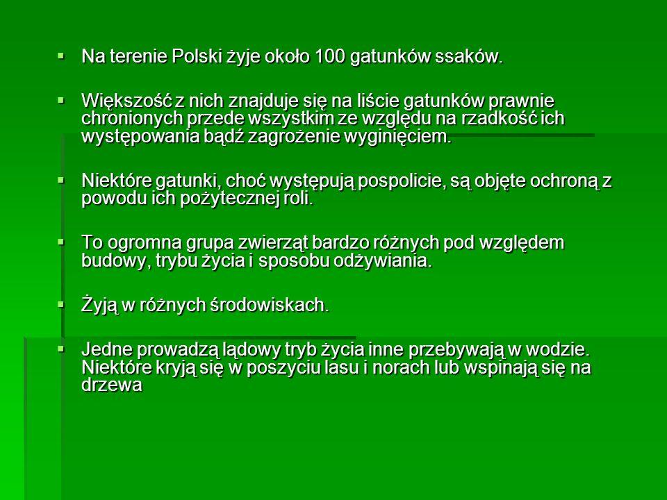 Na terenie Polski żyje około 100 gatunków ssaków. Na terenie Polski żyje około 100 gatunków ssaków. Większość z nich znajduje się na liście gatunków p