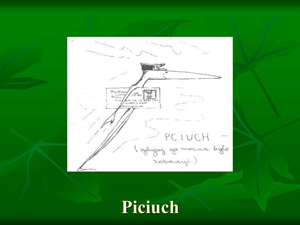 Piciuch