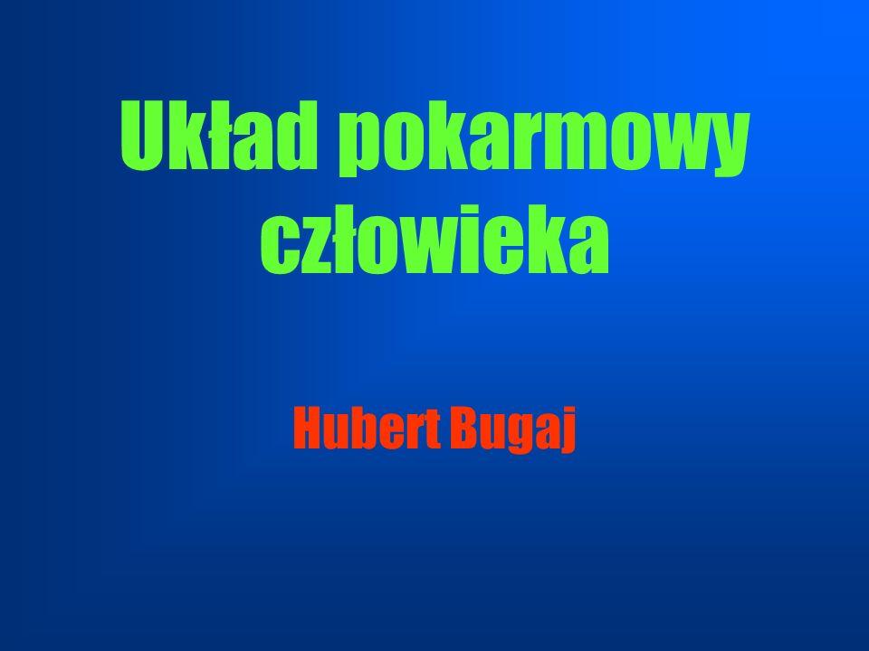 Układ pokarmowy człowieka Hubert Bugaj