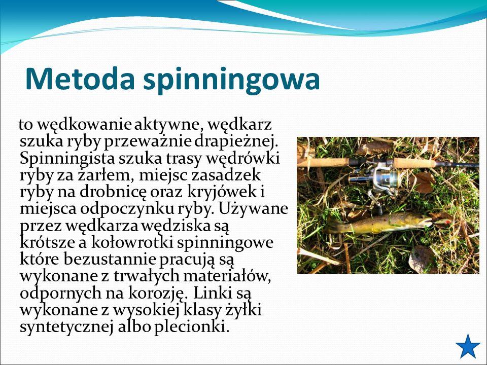 Metoda spinningowa to wędkowanie aktywne, wędkarz szuka ryby przeważnie drapieżnej. Spinningista szuka trasy wędrówki ryby za żarłem, miejsc zasadzek