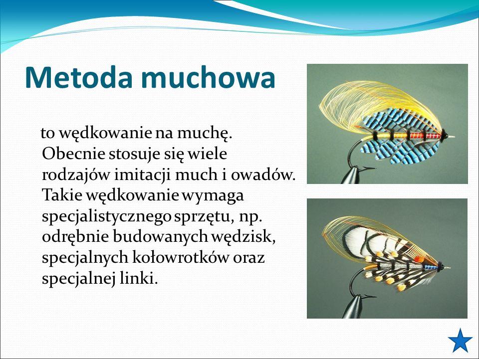 Metoda muchowa to wędkowanie na muchę. Obecnie stosuje się wiele rodzajów imitacji much i owadów.