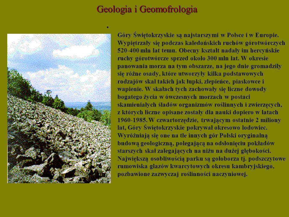 Geologia i Geomofrologia Góry Świętokrzyskie są najstarszymi w Polsce i w Europie. Wypiętrzały się podczas kaledońskich ruchów górotwórczych 520-400 m