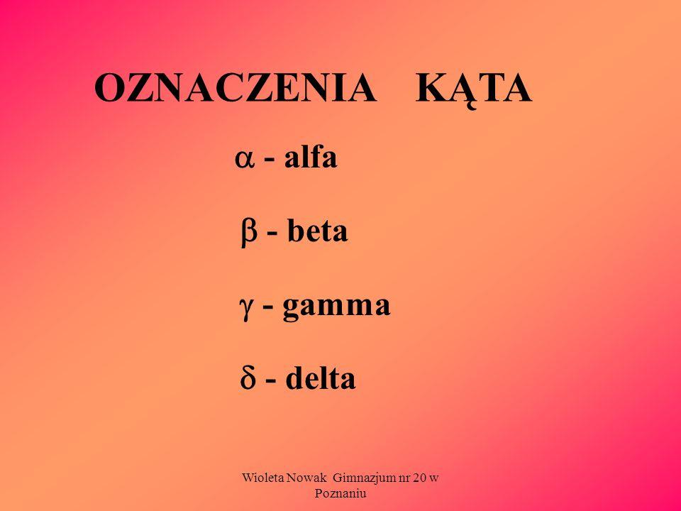 Wioleta Nowak Gimnazjum nr 20 w Poznaniu OZNACZENIA KĄTA - alfa - beta - gamma - delta