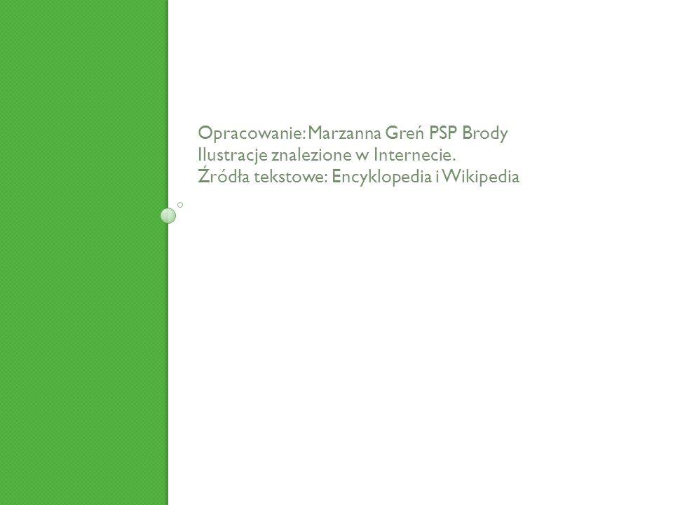 Opracowanie: Marzanna Greń PSP Brody Ilustracje znalezione w Internecie. Źródła tekstowe: Encyklopedia i Wikipedia
