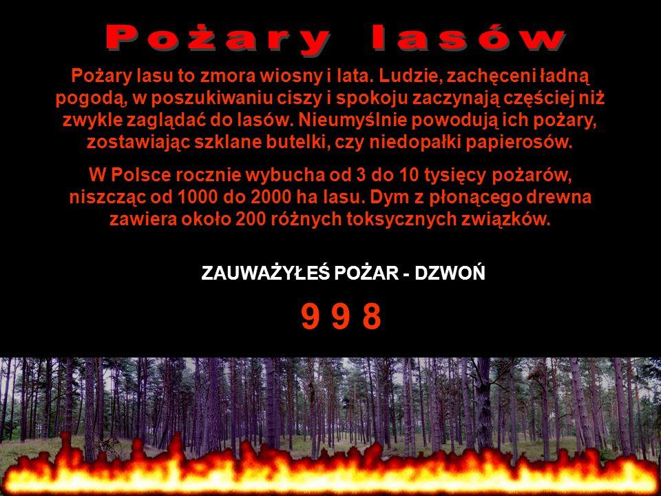 ZAUWAŻYŁEŚ POŻAR - DZWOŃ 9 9 8 Pożary lasu to zmora wiosny i lata. Ludzie, zachęceni ładną pogodą, w poszukiwaniu ciszy i spokoju zaczynają częściej n
