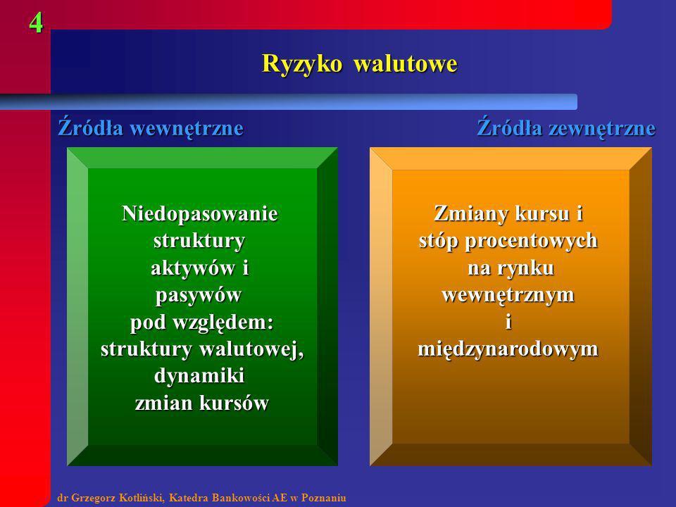 dr Grzegorz Kotliński, Katedra Bankowości AE w Poznaniu 4 Ryzyko walutowe Źródła wewnętrzne Źródła zewnętrzne Niedopasowaniestruktury aktywów i pasywó