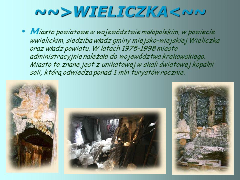~~>WIELICZKA<~~ M iasto powiatowe w województwie małopolskim, w powiecie wwielickim, siedziba władz gminy miejsko-wiejskiej Wieliczka oraz władz powiatu.