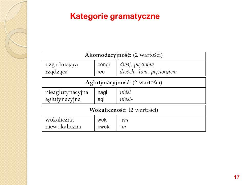 Kategorie gramatyczne 17