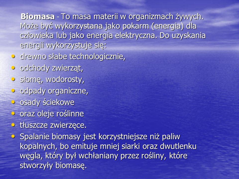 BiomasaTo masa materii w organizmach żywych. Może być wykorzystana jako pokarm (energia) dla człowieka lub jako energia elektryczna. Do uzyskania ener