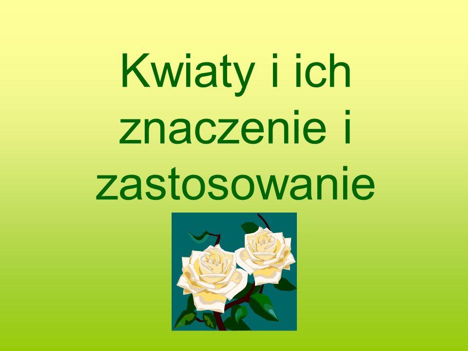 Kwiaty i ich znaczenie i zastosowanie