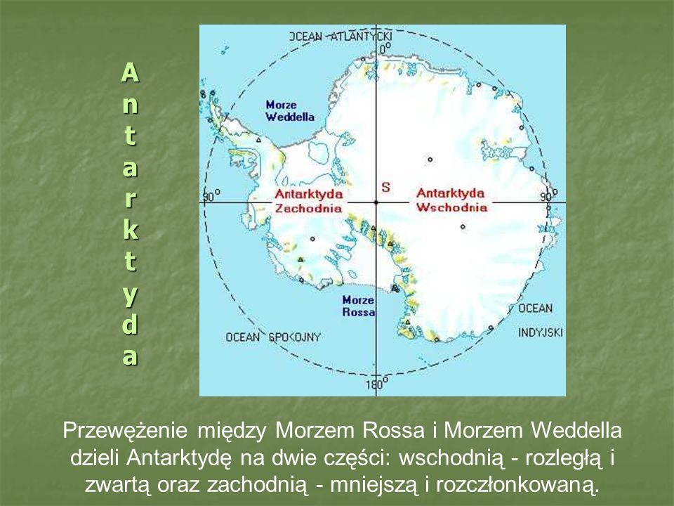 AntarktydaAntarktydaAntarktydaAntarktyda Przewężenie między Morzem Rossa i Morzem Weddella dzieli Antarktydę na dwie części: wschodnią - rozległą i zwartą oraz zachodnią - mniejszą i rozczłonkowaną.