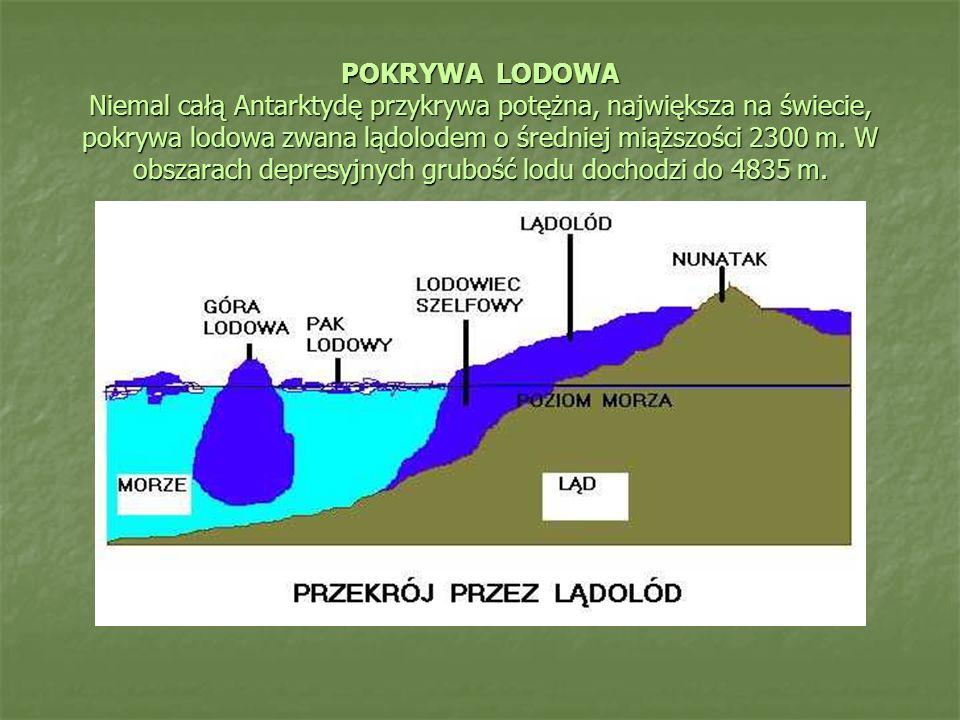 POKRYWA LODOWA Niemal całą Antarktydę przykrywa potężna, największa na świecie, pokrywa lodowa zwana lądolodem o średniej miąższości 2300 m. W obszara