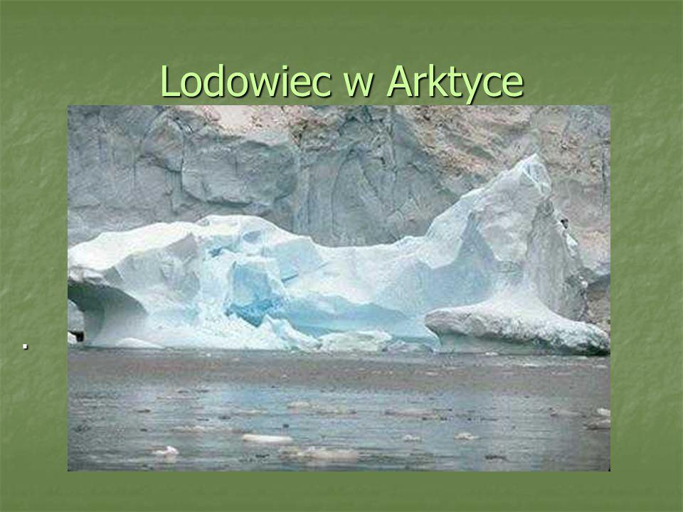 Lodowiec w Arktyce.