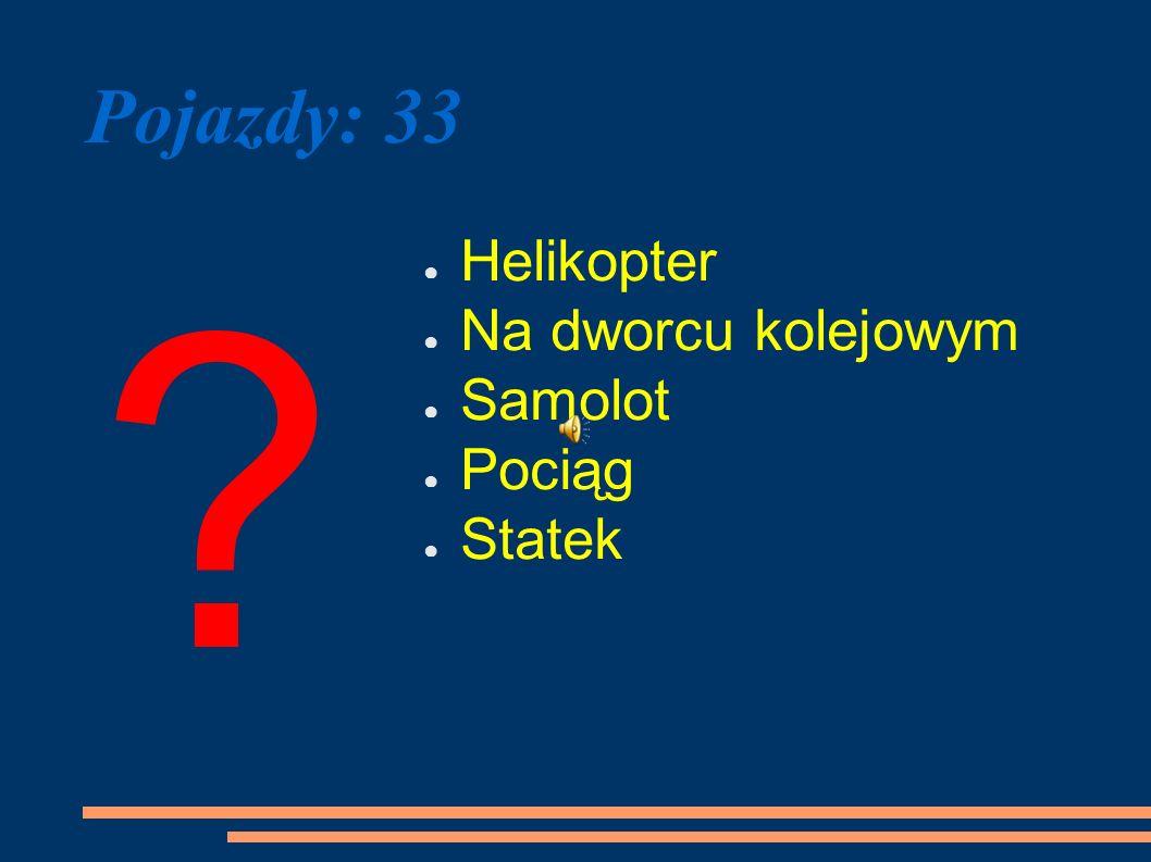 Pojazdy: 33 ? Helikopter Na dworcu kolejowym Samolot Pociąg Statek