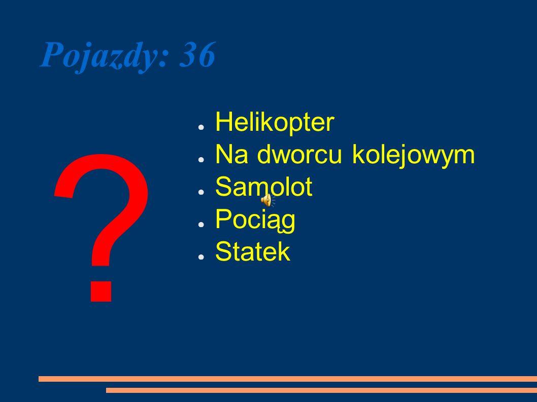Pojazdy: 36 ? Helikopter Na dworcu kolejowym Samolot Pociąg Statek