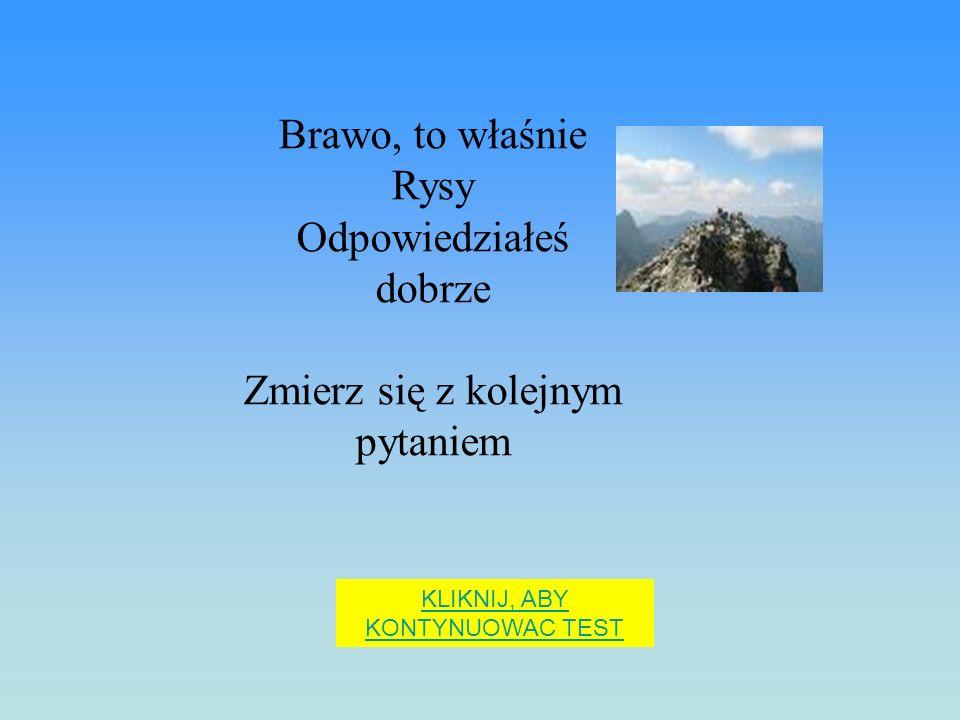 Najwyższy szczyt Polski to: Śnieżka Giewont Rysy
