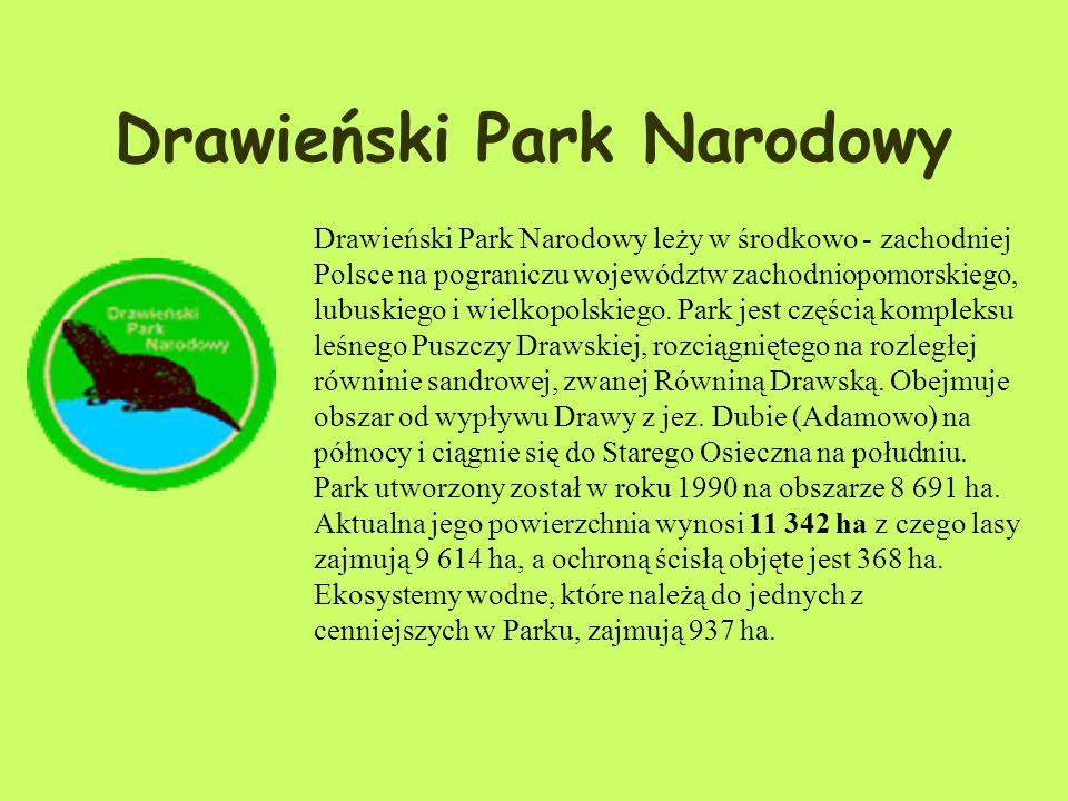 Zwierzęta Na obszarze Parku stwierdzono występowanie 144 gatunków ptaków, w tym 108 lęgowych, m.in. żuraw, puchacz, bielik, gągoł i zimorodek. Symbole