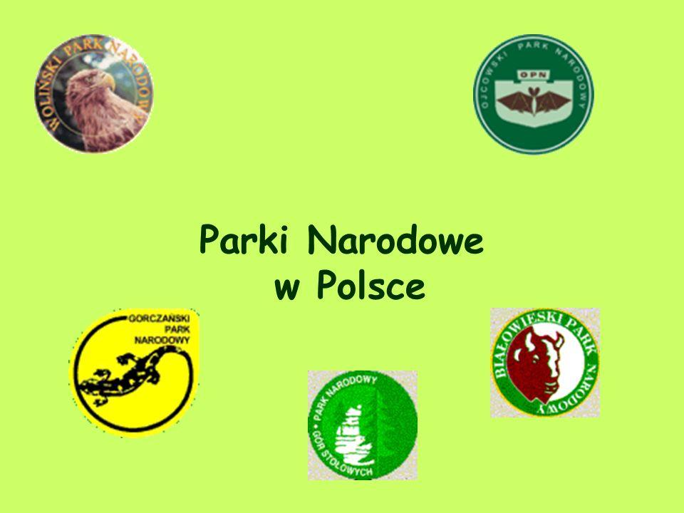 Najważniejsze Parki Narodowe w Polsce i na Świecie Anna Roman Kl.IIb.