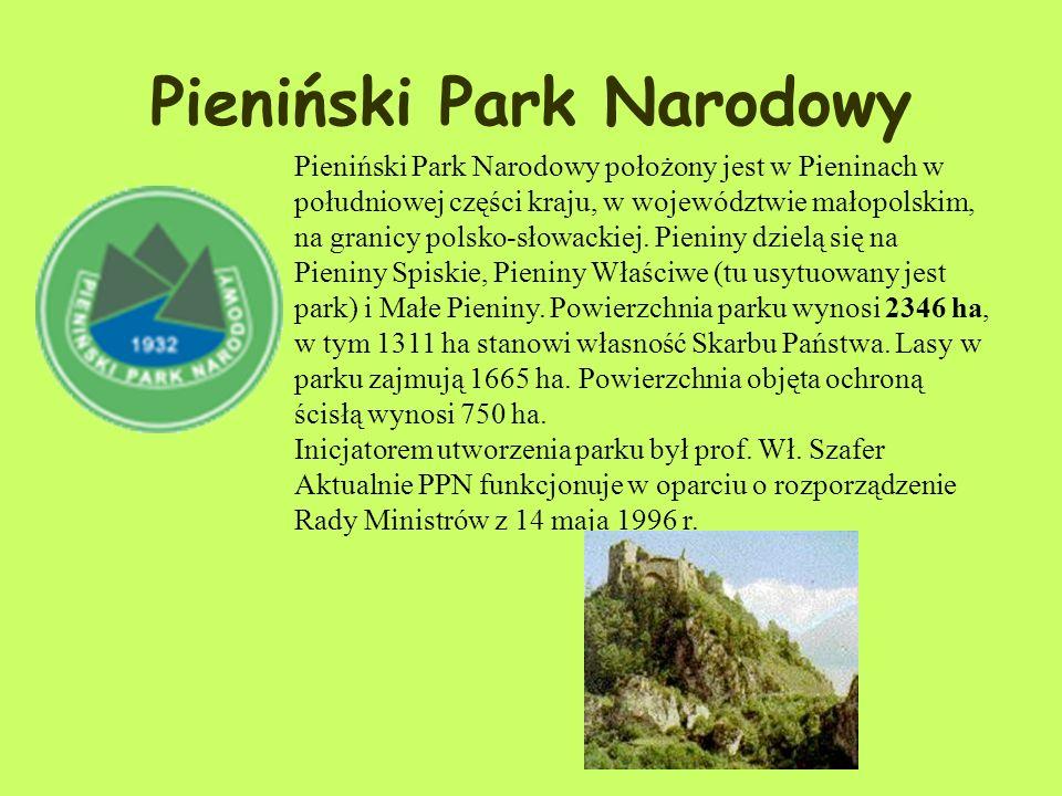 Zwierzęta: Fauna parku jest bardzo bogata. Dotychczasowe badania wskazują na bytowanie na jego terenie ok. 5500 gatunków zwierząt; ogólną zaś ich licz