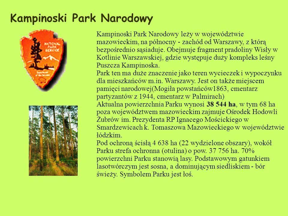 Kampinoski Park Narodowy Kampinoski Park Narodowy leży w województwie mazowieckim, na północny - zachód od Warszawy, z którą bezpośrednio sąsiaduje.