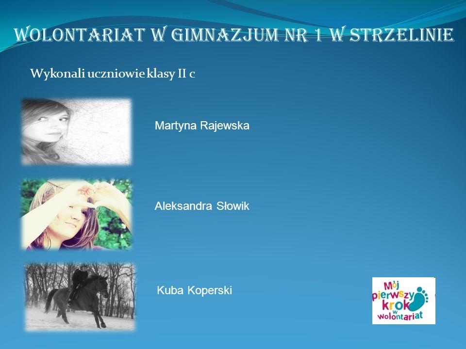 Wykonali uczniowie klasy II c Martyna Rajewska Aleksandra Słowik Kuba Koperski Wolontariat w Gimnazjum nr 1 w Strzelinie