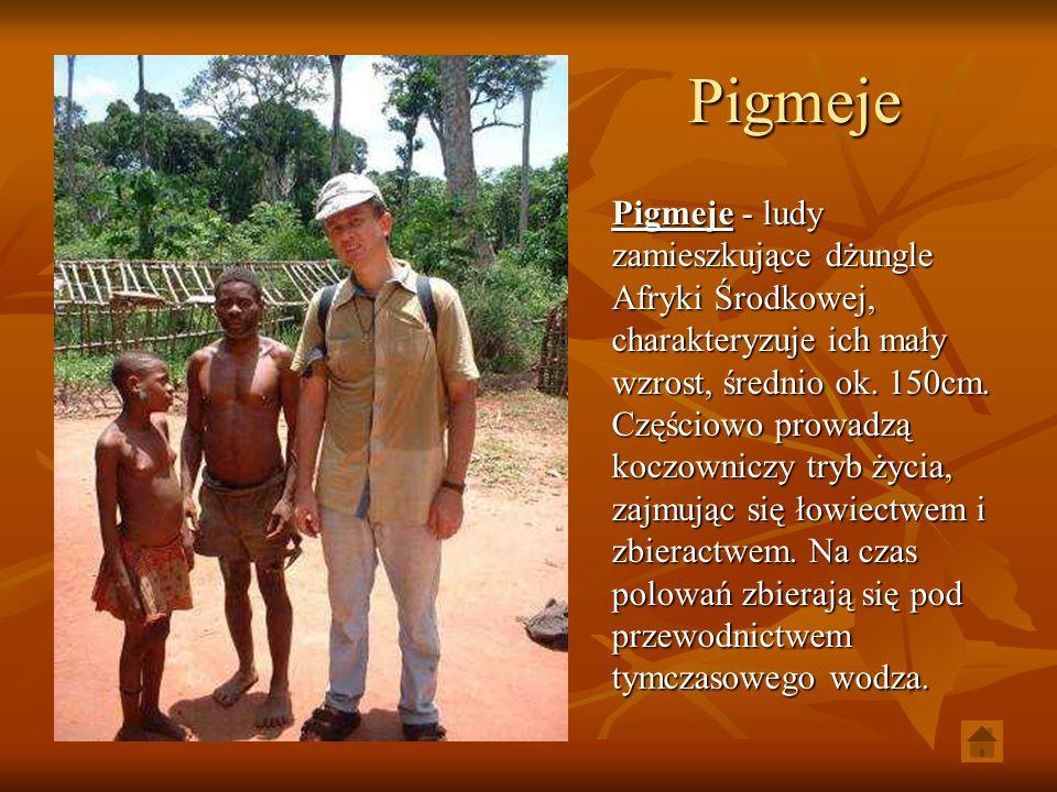 Pigmeje Pigmeje - ludy zamieszkujące dżungle Afryki Środkowej, charakteryzuje ich mały wzrost, średnio ok. 150cm. Częściowo prowadzą koczowniczy tryb