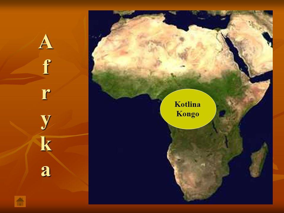 Obszar w Afryce Środkowej o powierzchni ok.3 mln km² i średniej wysokości ok.