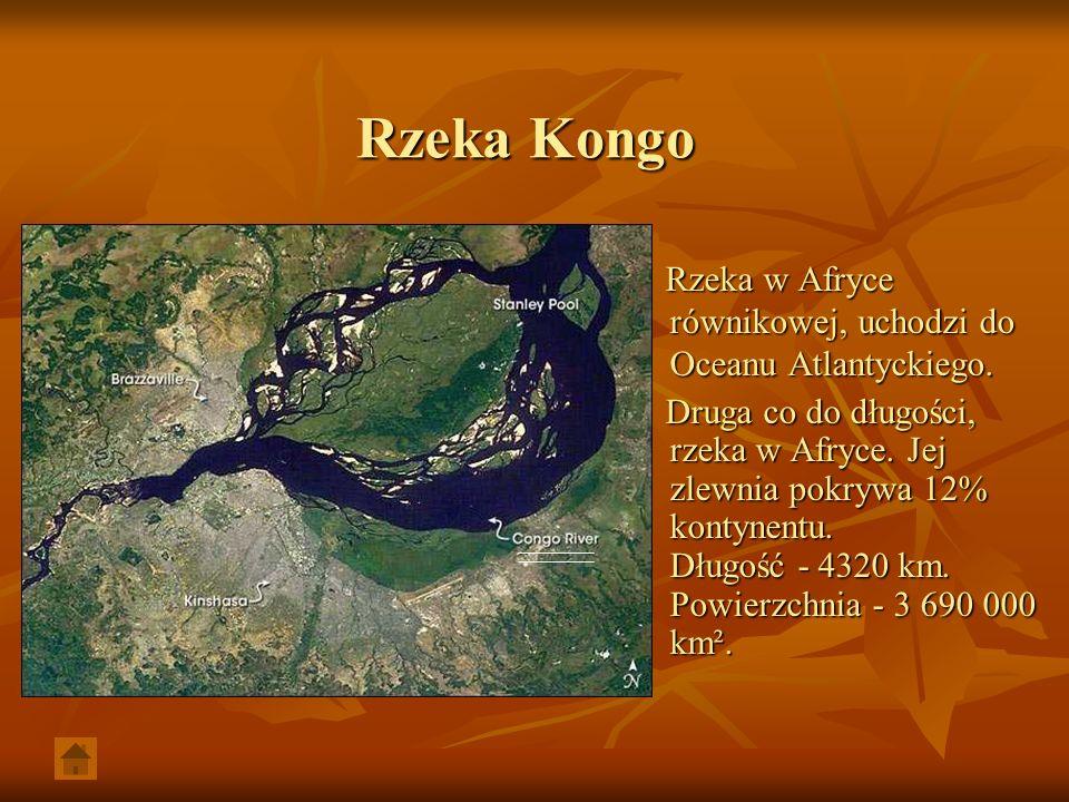 Rzeka Kongo Rzeka w Afryce równikowej, uchodzi do Oceanu Atlantyckiego. Rzeka w Afryce równikowej, uchodzi do Oceanu Atlantyckiego. Druga co do długoś