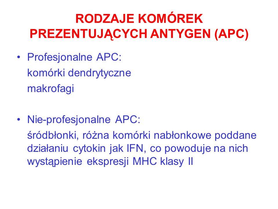 RODZAJE KOMÓREK PREZENTUJĄCYCH ANTYGEN (APC) Profesjonalne APC: komórki dendrytyczne makrofagi Nie-profesjonalne APC: śródbłonki, różna komórki nabłon