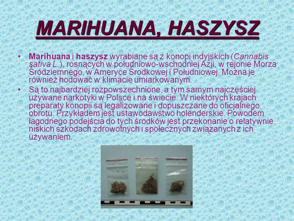 MARIHUANA, HASZYSZ Marihuana i haszysz wyrabiane są z konopi indyjskich (Cannabis sativa L.), rosnących w południowo-wschodniej Azji, w rejonie Morza