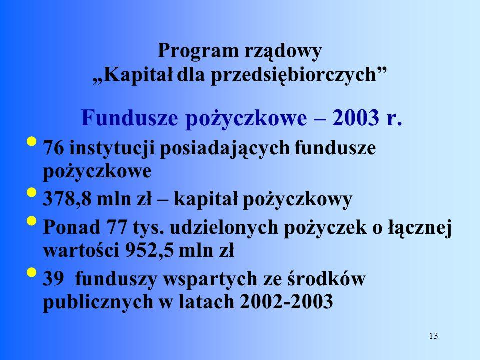 13 Fundusze pożyczkowe – 2003 r. 76 instytucji posiadających fundusze pożyczkowe 378,8 mln zł – kapitał pożyczkowy Ponad 77 tys. udzielonych pożyczek